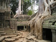 Ruins of the Angkor Wat in Angkor Cambodia.