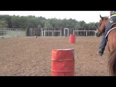 BARREL RACING TIPS WITH FALLON TAYLOR 940-239-9230 (+playlist)