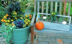 Autumn Container Gardens
