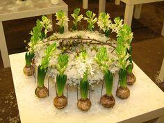 White Hyacinths, design by Annette von Einem