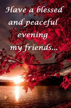 Have a blessed and Peaceful Evening my friend.
