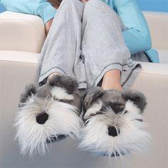 schnauzer slippers!