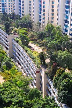 HDB Carpark Roof @ 180 Edgefield Plains, Singapore. By Skyrise Greenery.