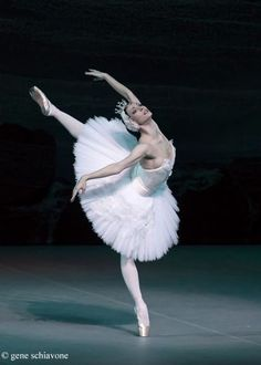Olga Smirnova, Swan Lake, Bolshoi Ballet taken at Lincoln Center on their US tour gene schiavone