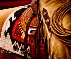 'Old West' by Sherri Cavalier Cowboy Gear, Cowboy And Cowgirl, Cowgirl Style, Cowboys And Angels, Cowboys And Indians, Western Riding, Western Art, Western Style, Pretty Horses