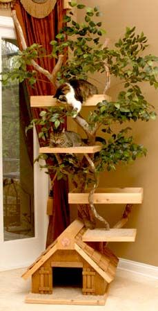 rustic kitty tree house