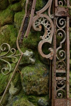 "lawsoffate: "" Moss and Gate (by S Migol) """