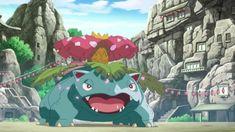 Bulbasaur, Ivy, Cute, Ash From Pokemon, Kawaii, Hedera Helix