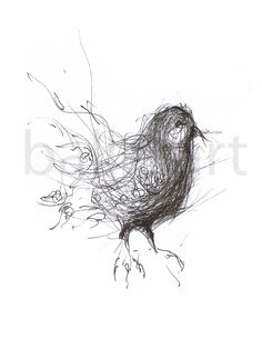 'Why shouldn't truth be stranger than #fiction? Fiction, after all, has to make sense - #Mark #Twain   www.balletart.etsy.com   #art #bird #drawing #black and  #white