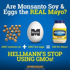 Monsanto Mayo?! Bring out the Hellmann's and bring out the GMOs! That's right, if you're eating Mayo you're probably eating GMOs. Learn more: http://gmoinside.org/bring-hellmanns-bring-gmos #GMOs #righttoknow #stopmonsanto