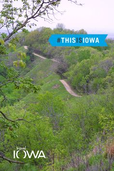 This is a view!  Cabins at Waubonsie State Park in Hamburg offer this stunning view of the Loess Hills. Book your winter getaway now!