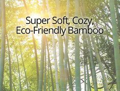 Bamboo Clothing Canada: Hats, Pants, Scarves and Headbands Canadian Clothing Brands, Sustainable Fashion, Sensitive Skin, Headbands, How To Find Out, Bamboo, Canada, Hats, Clothes