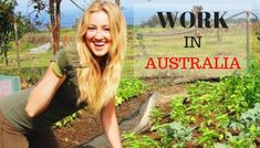 Why Australia is a superb Country to be Work In