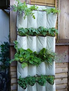 Recycled Shoe Tidy Planter - Inspirational Recycling