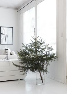 Minimal Christmas tree in glass vase