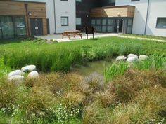 SuDS Scheme the completed southern rain garden