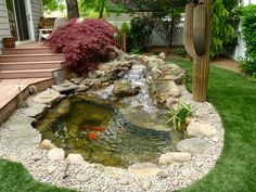 Backyard Fish Pond   Ecosystem Pond With Bog Filtration   Brookville, NY.  Contact Us Today At 516 937 FISH   Ecosystem Ponds, Fish Ponds   Pinterest    Fish ...