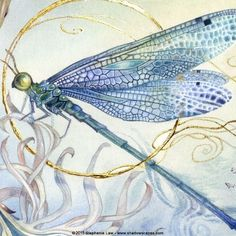 Stephanie Law - watercolor painter, botanical illustrator and artist of fantasti. - paintings to inspire - Stephanie Law – watercolor painter, botanical illustrator and artist of fantastical dreamworld im - Dragonfly Drawing, Dragonfly Wall Art, Dragonfly Painting, Butterfly Art, Art Picasso, Gold Leaf Art, Insect Art, Watercolor Paintings, Watercolors