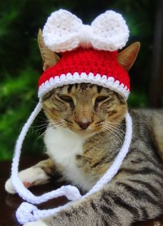 Christmas Cat Hat Costume - Christmas Hat for Cats and Small Dogs on Etsy, $15.00