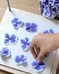 Flowers Discover How to press flowers The process of pressing this beautiful hydrangea using a traditional flower press. Diy Resin Art, Diy Resin Crafts, Leaf Crafts, Flower Crafts, Diy Flowers, Paper Crafts, Press Flowers, Handmade Flowers, Fabric Flowers