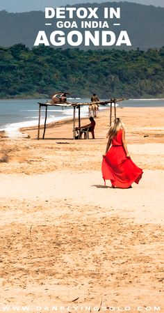 Agonda beach in Goa, India. Think coconuts, cows and chillax… So why did I love AND hate it?