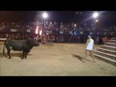 When You Play Around with a Bull, #Funny, #Animals, #Bull, #Horns, #Fire, #Torched, #Man, #Rammed
