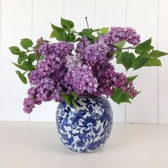 Just picked this beautiful fragrant lilac from the garden have a fabulous Sunday