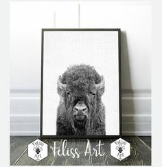 Buffalo Print Buffalo Digital Prints Buffalo Photography