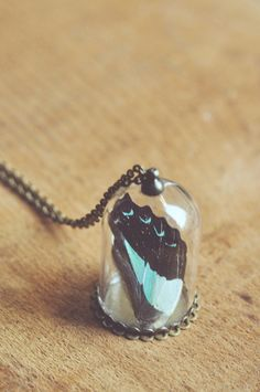Hey, I found this really awesome Etsy listing at https://www.etsy.com/listing/218033946/bell-jar-specimen-necklace