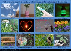 Many Environmentally-Friendly Alternatives to a Balloon, Lantern or Butterfly release.