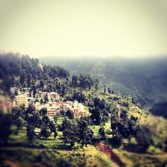 McLeod Ganj. View from the room.