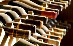 Izlet - TOP vinska tura v Slovenski Istri Več na www.autentica.si