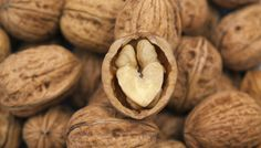 Sensible Nuss #nut #fotd #food #walnut #fall