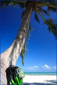 Best dive sites in Florida