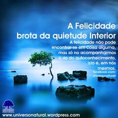 A Felicidade brota da quietude Interior universe natural