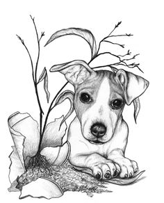The wonderful artwork of Laurie J. Grove.  The little Jack Russell terrier above is an example of the exquisite detail found in her art.