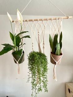 Triple Macrame Plant Hanger for Medium & Large Plants | Etsy Macrame Plant Hangers, Large Plants, Medium, Etsy, Home Decor, Decoration Home, Room Decor, Tall Plants, Interior Design