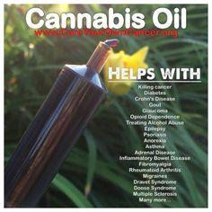 Cannabis Cures