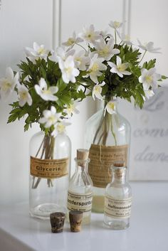 43 Beautiful Spring Flower Arrangements for Decorating Your Home Home Design, Home Decor and DIY Crafts Beautiful Spring Flower Arrangements for Decorating Your HomeBesides the protagonists o Flowers In Jars, Bunch Of Flowers, Big Flowers, Fresh Flowers, Colorful Flowers, Spring Flowers, White Flowers, Beautiful Flowers, Simple Flowers