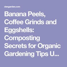 Banana Peels, Coffee Grinds and Eggshells: Composting Secrets for Organic Gardening Tips Updated on April 06, 2016