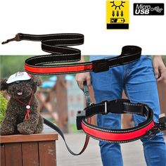 Namsan USB Rechargeable Solar LED Dog/cats Safety CollarandLeash Set,Reflective Flashing Lights LED cats Dog Safety Collar Leash Set,Solar charger and Waterproof,Red * You can get more details here : Cat Collar, Harness and Leash