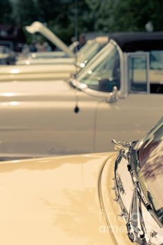 Classic Cadillac cars from the 1950s - http://edward-fielding.artistwebsites.com/featured/row-of-vintage-cars-edward-fielding.html