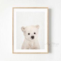 Baby Polar Bear Print, Baby Animal Nursery Art, Animal Nursery Decor Wall Art by Amy Peterson
