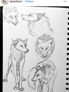 (notitle) - Traditional Arts and Ideas - Chiens Animal Sketches, Animal Drawings, Cute Drawings, Art Sketches, Wolf Character, Character Design, Pet Anime, Wolf Sketch, Sketch Inspiration