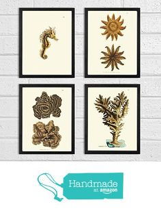 Antique Coral Print Set of 4 Art Prints Beautiful Beige Natural Corals Sea Horse Sea Stars Ocean Marine Nature Bathroom Bedroom Beach Home Room Wall Decor Unframed NOD from LoveThePrint https://www.amazon.com/dp/B01LT4FR62/ref=hnd_sw_r_pi_dp_Z885xbDCPB8V5 #handmadeatamazon