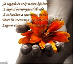 Photo by Scal Profil Facebook, Osho, Birthday Quotes, Love You, Personal Development, Diana, Hands, Life, Morning Quotes