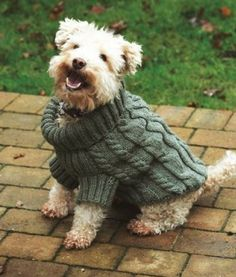 Tina's Knitting Tips: Help knitting our Dog Jumper Knitting Pattern