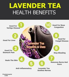 Among the benefits of lavender tea is often used to treat physical pain, including anxiety, depression, insomnia and headaches, and toothache. Lavender Tea Benefits, Herbal Tea Benefits, Fruit Benefits, Pomegranate Health Benefits, Green Tea Benefits, Herbal Teas, Peppermint Tea Benefits, Tea Blends, Healing Herbs