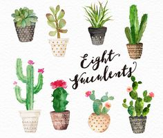 8 Watercolour succulent arrangements (1000~2500 px)8 Watercolor succulents (800~2000 px)5 Watercolor succulent pots (700~900 px)Format: PNGResolution:300DPI