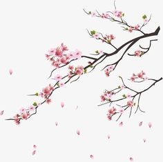 60 Ideas cherry tree branch pink blossom for 2019 Cherry Blossom Drawing, Cherry Blossom Vector, Pink Blossom, Blossom Trees, Japanese Cherry Blossoms, Art Floral, Frame Floral, Flower Branch, Flower Art